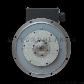 灯塔-车载专用直流永磁发电机