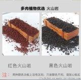 太原3-6毫米黑色 红色火山石进鸿得厂家