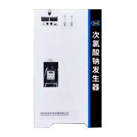 农村饮水消毒设备/农村全自动次氯酸钠消毒机