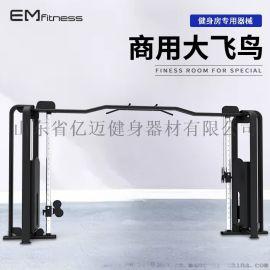 大飞鸟训练器 龙门架力量训练器 厂家直销商用健身器材太空款器材