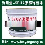 SPUA聚脲防水防腐材料技术在泵站出水流道加固应用
