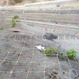 江西sns柔性防护网 边坡防护网生产厂家