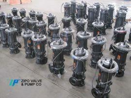 自贡自泵水泵厂无堵塞铸铁潜水泵排污泵