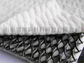 排水网 复合三维排水网