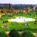 四川樂山生態園投放安裝雲朵充氣蹦蹦雲遊客們很喜歡