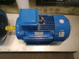 11KW-4三相异步感应式电机