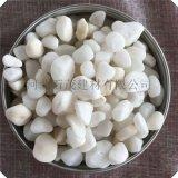 白色洗米石 小石米 水磨石子 透水石