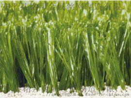 湘潭市湘乡市围挡草坪供应 幼儿园户外人造草坪