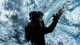 从虚拟现实中感受大自然,世界真的不一样了!