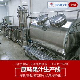 原味果汁生产线 水果榨汁机调配缸过滤脱气机灌装设备