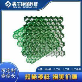 珠海HDPE塑料植草格 停车位园林绿化植草格
