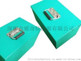 48V新国标电动车电池16串铁锂电池组