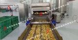 红薯片的加工工艺,湖南双网带红薯片油炸机