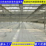 4米寬白色PE地布黑龍江價格動態