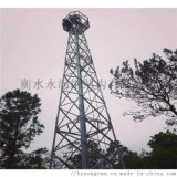 气象检测塔、摄像塔生产厂家、观测了望塔
