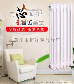 GGL3067-1.0型钢制柱形散热器