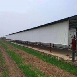 牛场畜牧养殖场卷帘挡风透光防寒保暖鸡舍猪场卷帘布