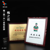 广州抗疫嘉奖表彰奖牌定制  志愿者纪念奖牌