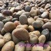 供应鹅卵石 铺路用鹅卵石 景观背景围墙用鹅卵石