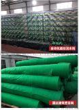 西安蓋土網綠網防塵網13659259282