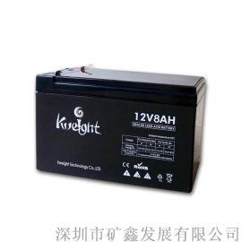 铅酸电池工业蓄电池专用电池应急灯电瓶消防电源电池