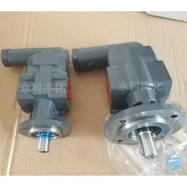 DK-180-RF-D15化工液体输送泵