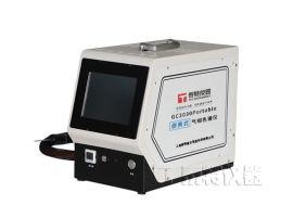 便携式/小型非甲烷总烃分析仪气相色谱仪