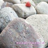 赣州本格鹅卵石 公园铺路造景 鱼缸盆景专用鹅卵石