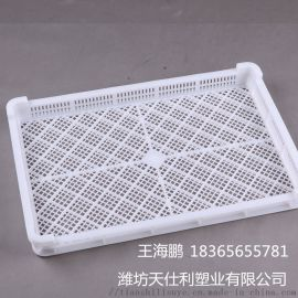 廠家直銷塑料單凍盤冷凍盤水產冷凍盤