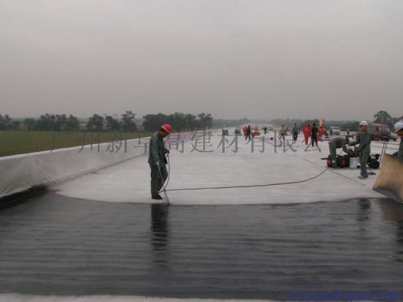氯丁橡膠乳瀝青防水塗料 建築擋水