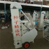 廠家供應多功能種子篩選機 花生米除塵除雜篩選機