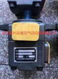 双联叶片泵YB1-100/25