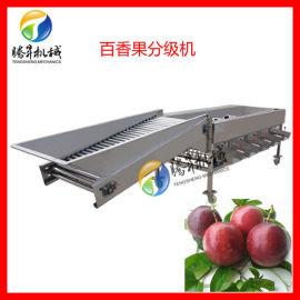 百香果大小分选机选果机,圆形果蔬分级机,厂家直销