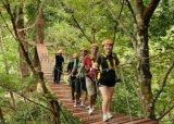 拓展訓練基地設施三邦供應叢林拓展設施規劃