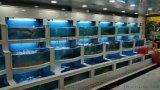 中山超市海鲜池,中山海鲜池尺寸,海鲜鱼池设计图