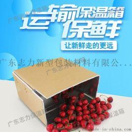广东专业泡沫保温箱厂家_新型可折叠冷链泡沫箱