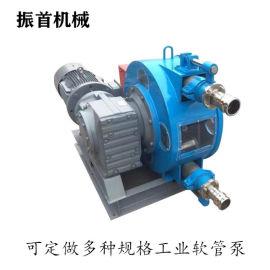 江苏盐城工业软管泵软管挤压泵视频