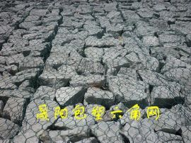 广东石笼网厂家PVC包塑格宾石笼哪里有