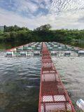 養魚網箱加工,黃鱔養殖網,泥鰍網水蛭網箱定製