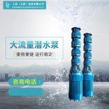 水利工程取水大排量潜水泵制造销售