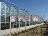 弘康温室 玻璃连栋温室 生态旅游温室建设