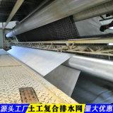 土工三維複合排水網-甘肅生產廠家