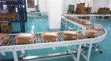 物流輸送線佛山 倉庫物流輸送線設備佛山廠家