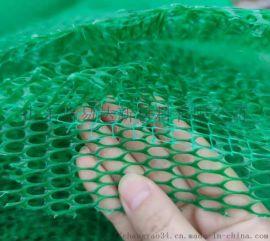 防止水土流失三维植被网