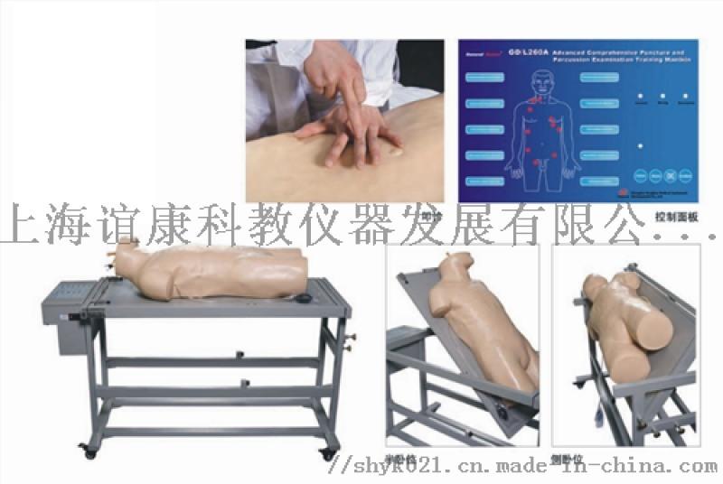 综合穿刺术与叩诊检查技能训练模拟人