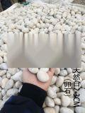 臺州鵝卵石,黑色鵝卵石益石天下廠家,(優質商家)