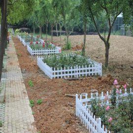内蒙古呼伦贝尔塑钢栅栏公司 草坪绿化带护栏