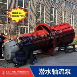 qz大流量潜水泵_潜水轴流泵品牌推荐_潜水轴流泵