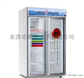 55寸透明液晶双开门显示冰箱门