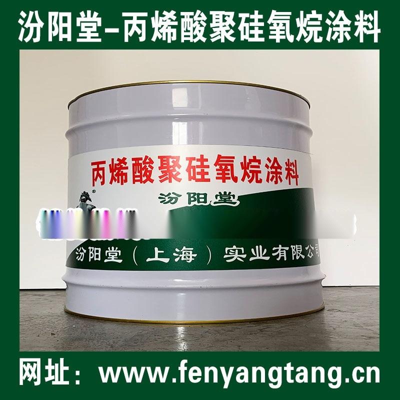 丙烯酸聚硅氧烷防腐涂料适用于地下室防渗漏处理砼防水